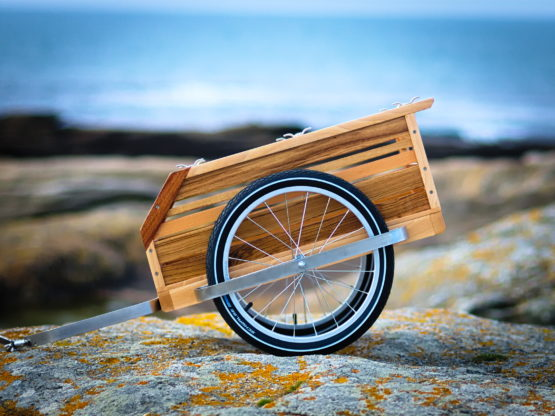 remorque vélo bois marin