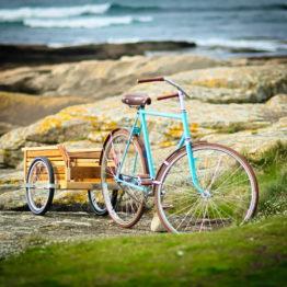 remorque vélo bois vélo hollandais